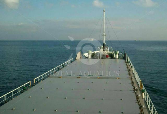貨物船80m
